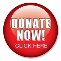 donate now2